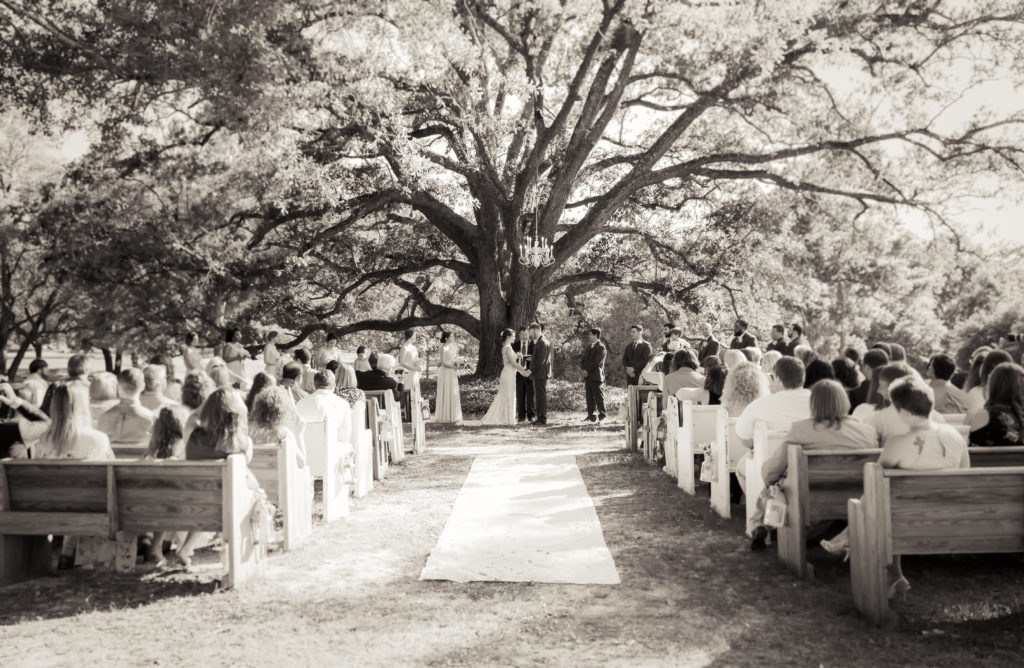 Ceremony under the oak