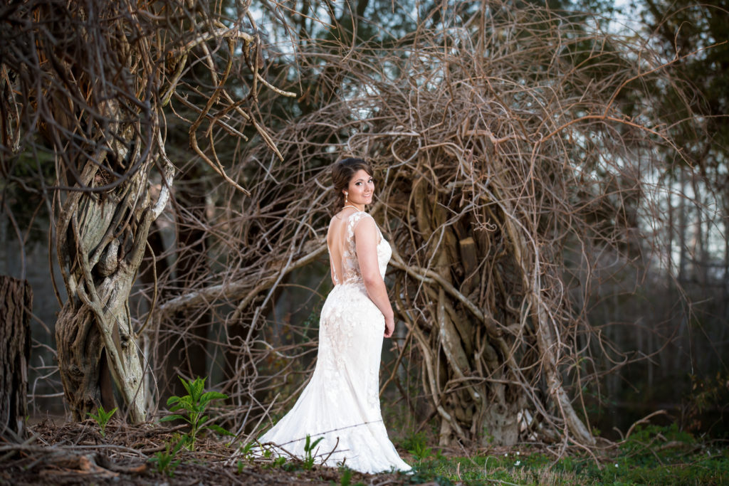Bride in dormant wisteria